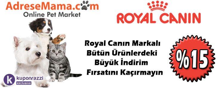 %15 Royal Canin İndirim Kodu [Kuponrazzi Özel]